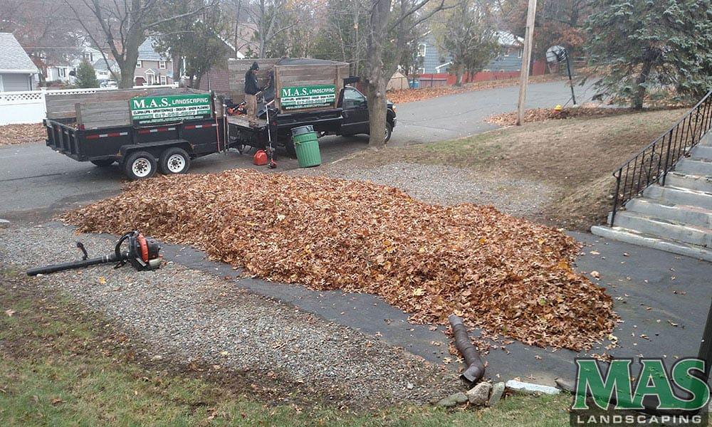 Yard Clean Ups Melrose MA